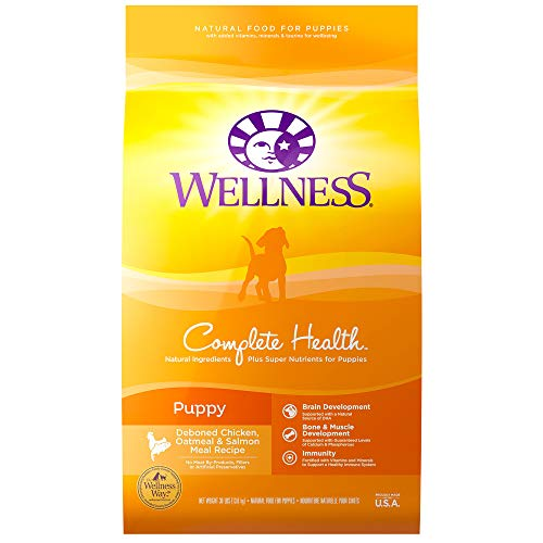 Wellness Natural Pet Food Complete Health Natural Dry Puppy Food, Chicken, Salmon & Oatmeal, 30-Pound Bag