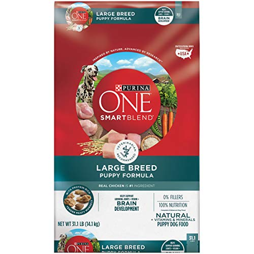 Purina ONE Natural Large Breed Dry Puppy Food, SmartBlend Large Breed Puppy Formula - 31.1 lb. Bag
